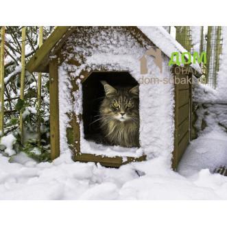 Будка для кота — купить по выгодной цене в Москве и Московской области с доставкой, фото