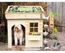 Идеи для постройки будки собаке
