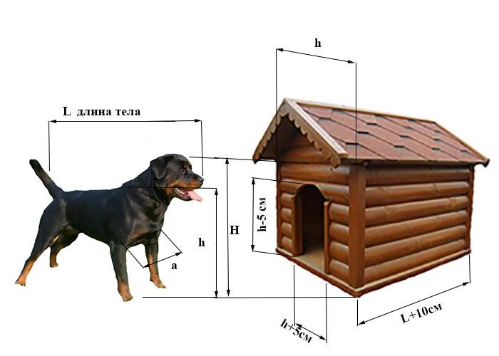 будка для ротвейлера размеры