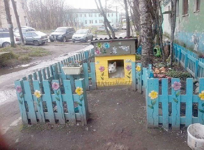 будка для собаки из бруса построить своими руками