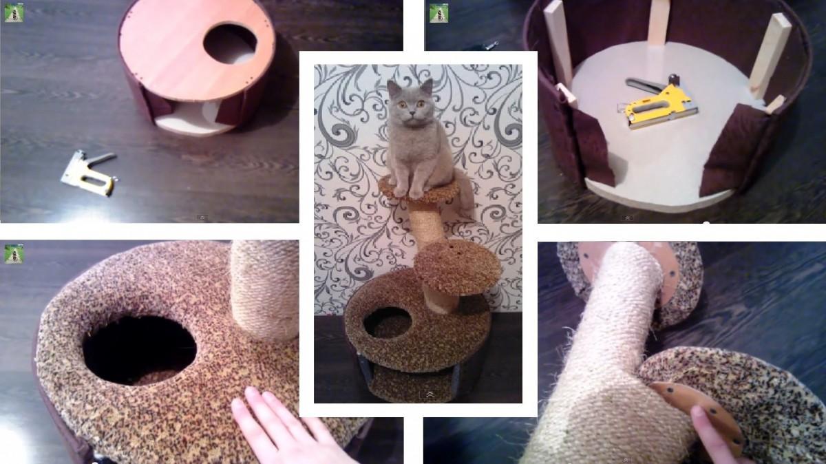 Самые простые домики для кошек своими руками
